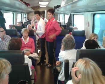 zingen in de trein